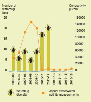 Figure 1: Yearly salinity and waterbug diversity, Wimmera River at Jeparit