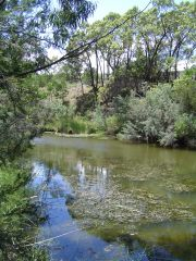 Jacksons Creek at Sunbury, by Melbourne Water