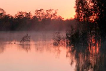 Environmental water for the Murray