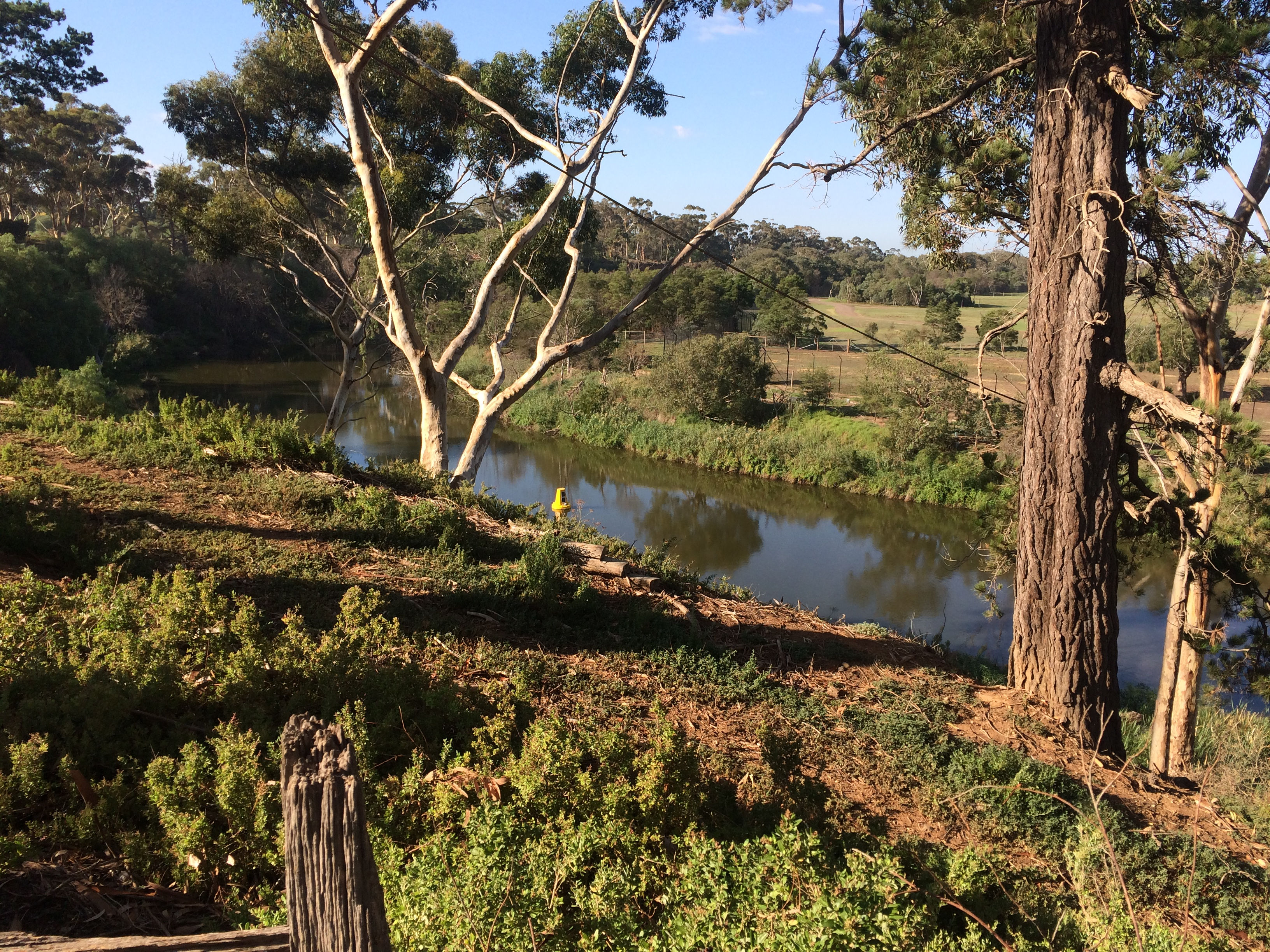 Lower Werribee River after environmental watering on 16 March 2016, by Melbourne Water