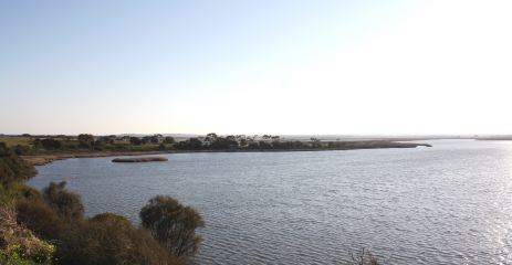 Lower Barwon wetlands from Lake Connewarre, by Saul Vermeeren