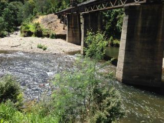 Wallhalla Rd bridge, Thomson River