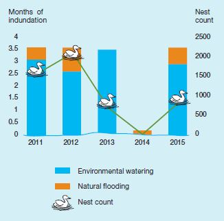 Figure 2: Nests and months of flooding, Boals Deadwood
